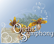 Orchid Symphony
