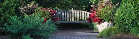 Bartholdi Park is a refuge from the stresses of the city. Secluded benches offer quiet shade in the summer and sheltered sunlight in the winter.