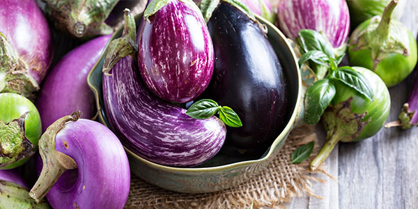 Purple eggplants