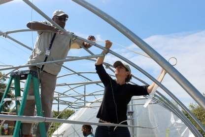 Veterans constructing a greenhouse