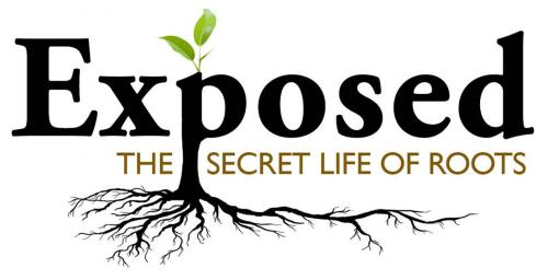 Exposed - The Secret Life of Roots