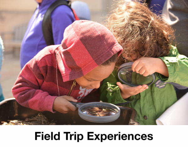 Field Trip Experiences -- children using magnifying glass