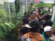 Field trip in the Conservatory
