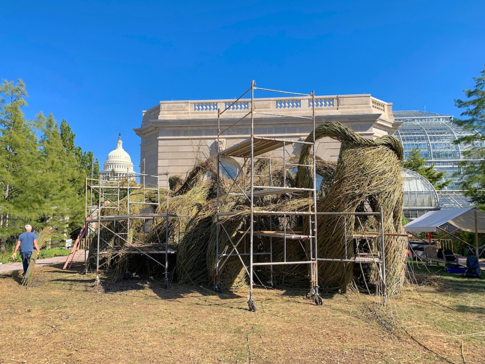 Patrick Dougherty stickwork sculpture in progress