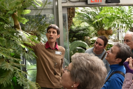 Botanist Susan Pell talks about adaptations of a bullhorn acacia to a group of garden visitors