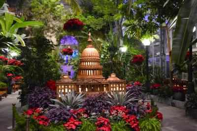 U.S. Capitol made from plant materials