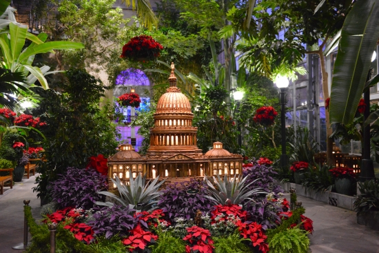 Holiday show at U.S. Botanic Garden -- U.S. Capitol made from plant parts and red poinsettias around it