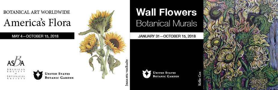 2018 art exhibits - Wall Flowers Botanical Murals and Botanical Art Worldwide America's Flora